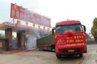 鹏飞建陶5万方专利铂金木纹砖发往全国 标志着产销两旺新的一年开始