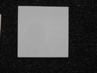 特价供应20x20, 15x15cm不透水皓白瓷片 厨卫内墙砖
