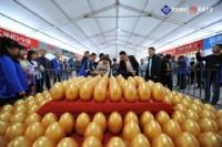 万福光彩第七届秋季家博会在宁国五星广场隆重举行